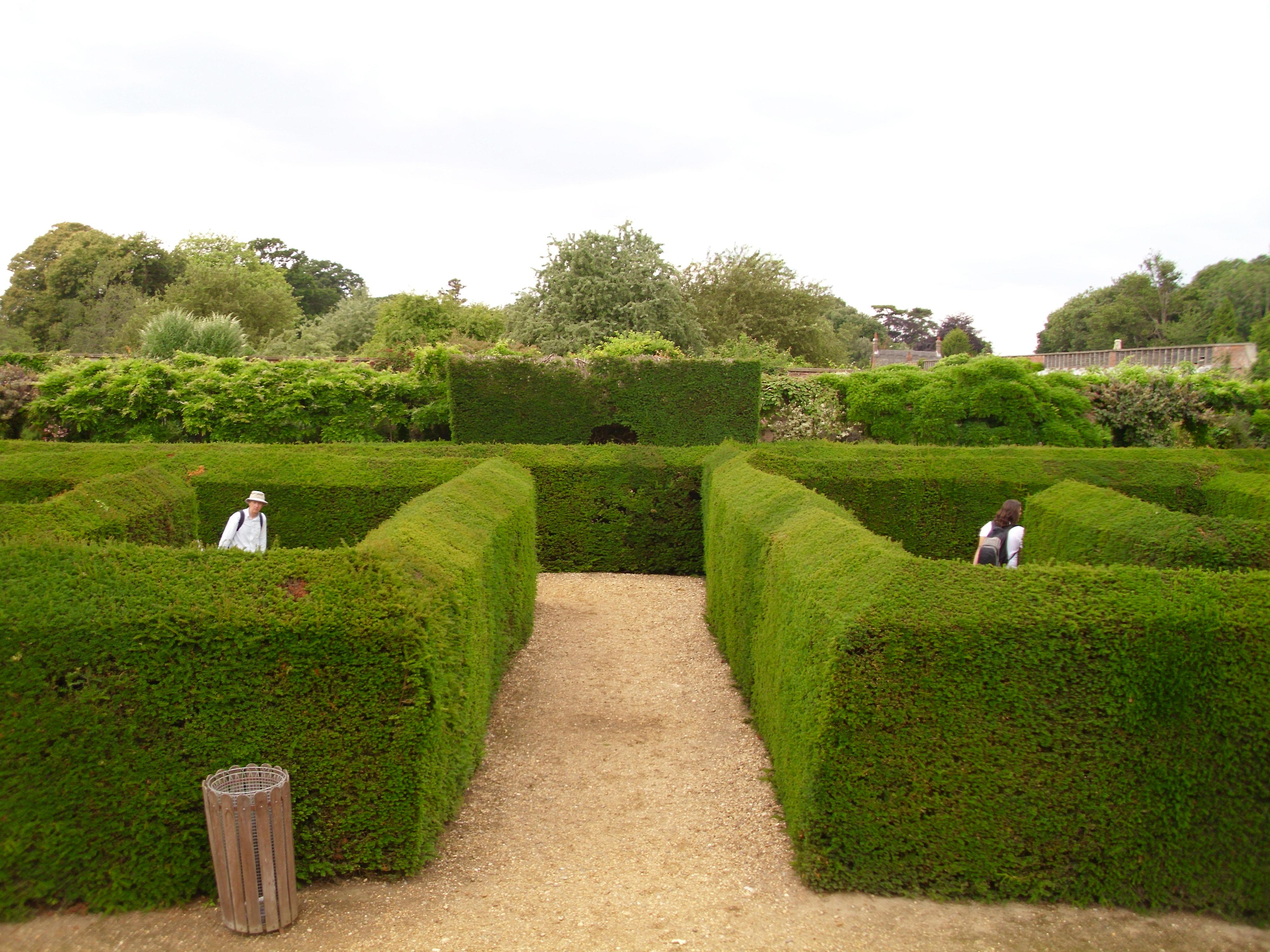 runescape how to get through maze